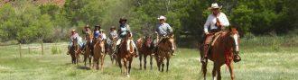 horse riding copy